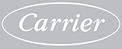carrier logo color